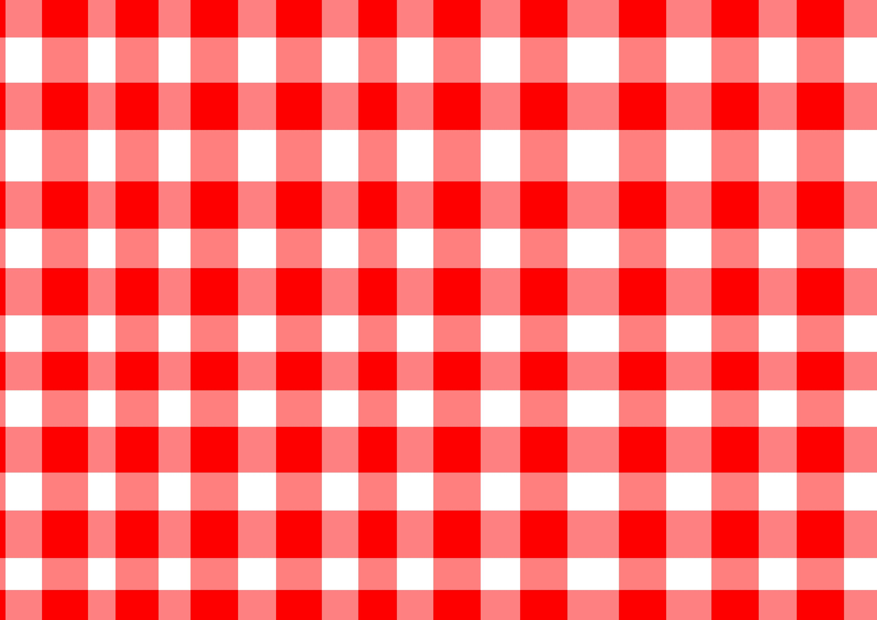 red and white checkered picnic blanket Blankets & Throws