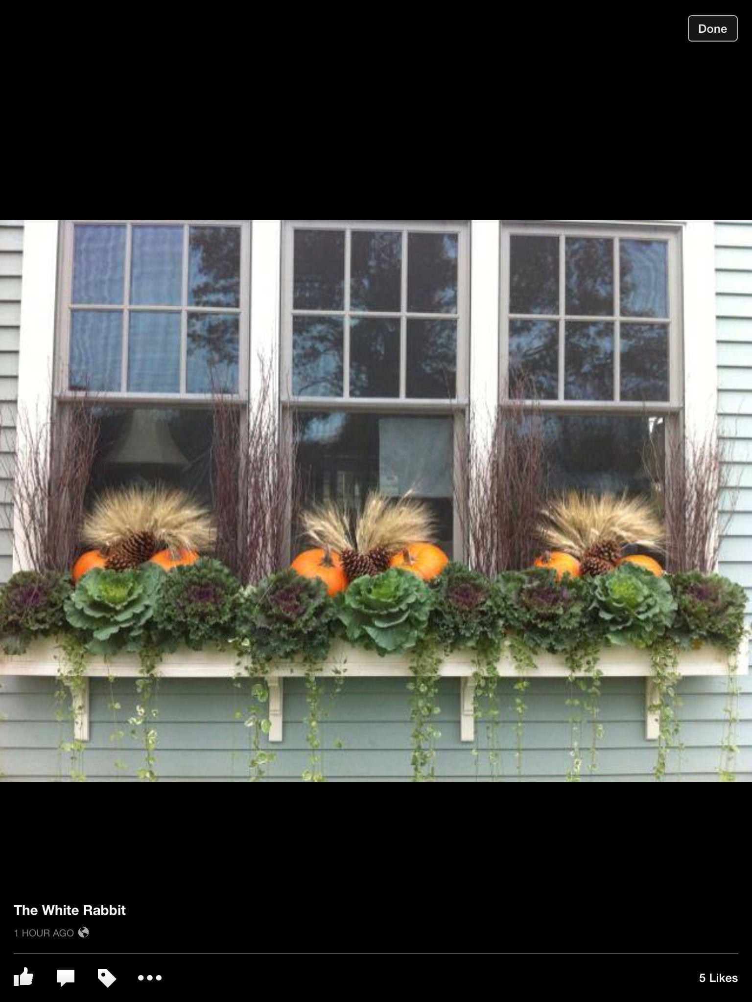 Winslow | Outdoorsy | Pinterest | Küchenfenster, Herbst und Blumenkästen