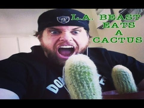 The L.A. BEAST has been inspired yet again and this time he might actually  wind up in the hospital for what he is about to do. … | Stupid guys,  Youtubers funny, Man