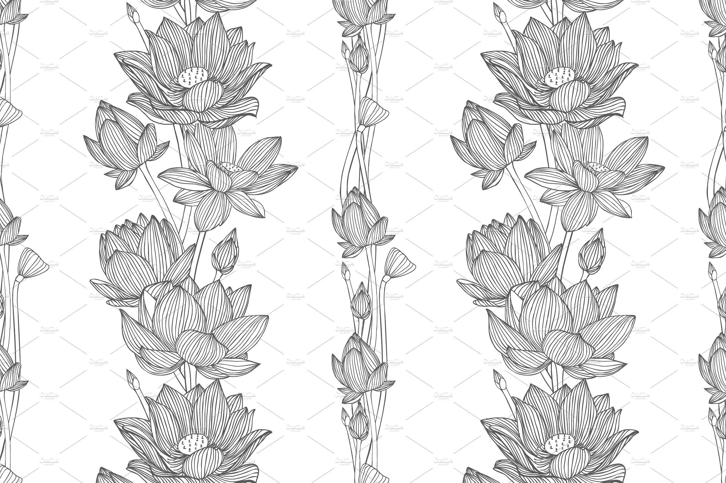 Linear lotus vector collection Lotus vector, Lotus