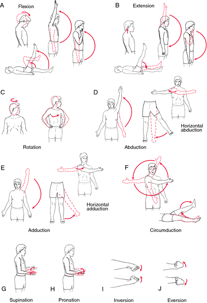 Pictures of exercises for stroke patients range motion exercise definition in also rh pinterest