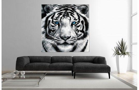 tableau contemporain tigre blanc un tableau envoutant pour d corer les murs de votre int rieur. Black Bedroom Furniture Sets. Home Design Ideas