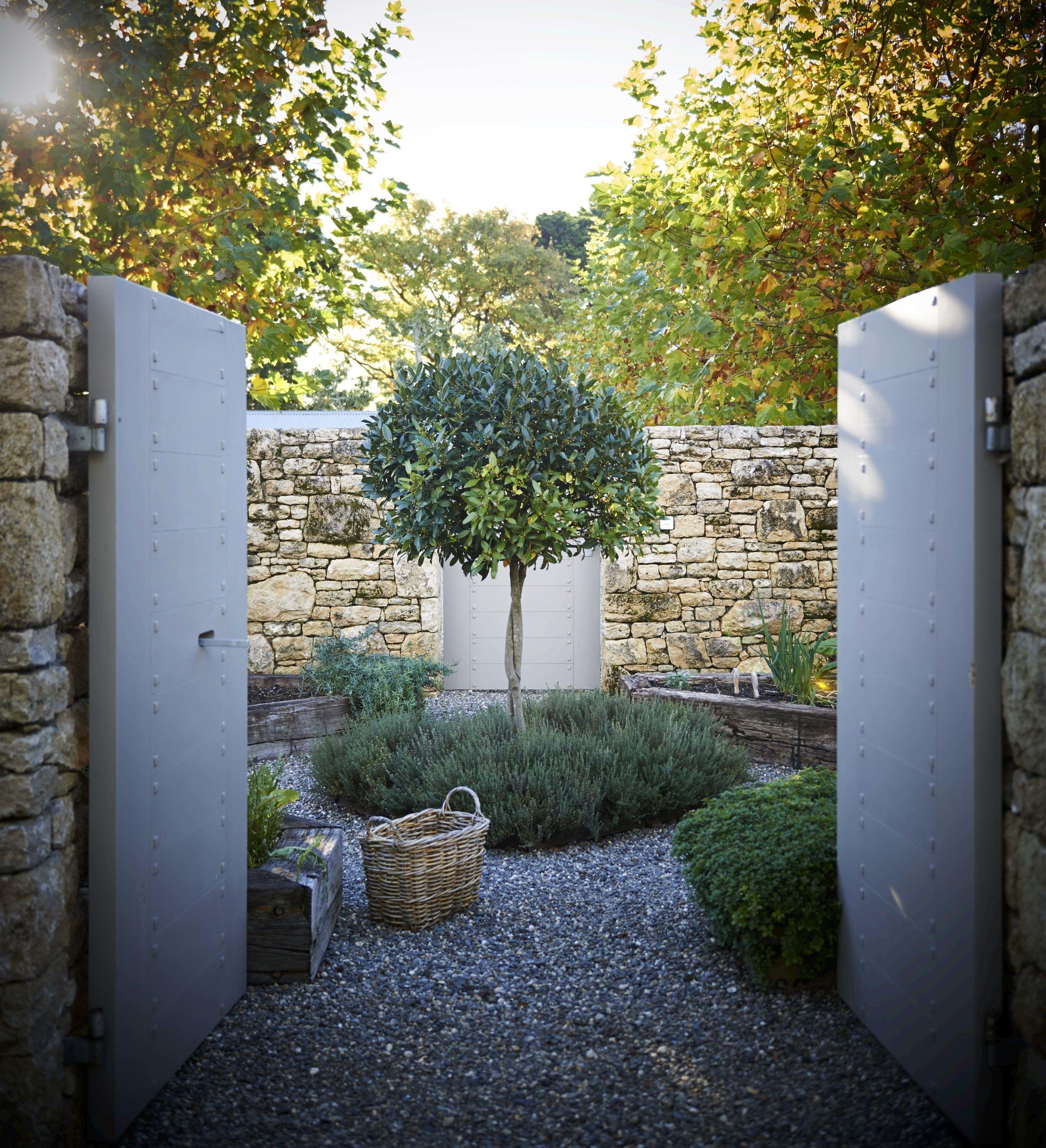 Courtyard Garden | Suzanne Turley Landscapes | Garden ...