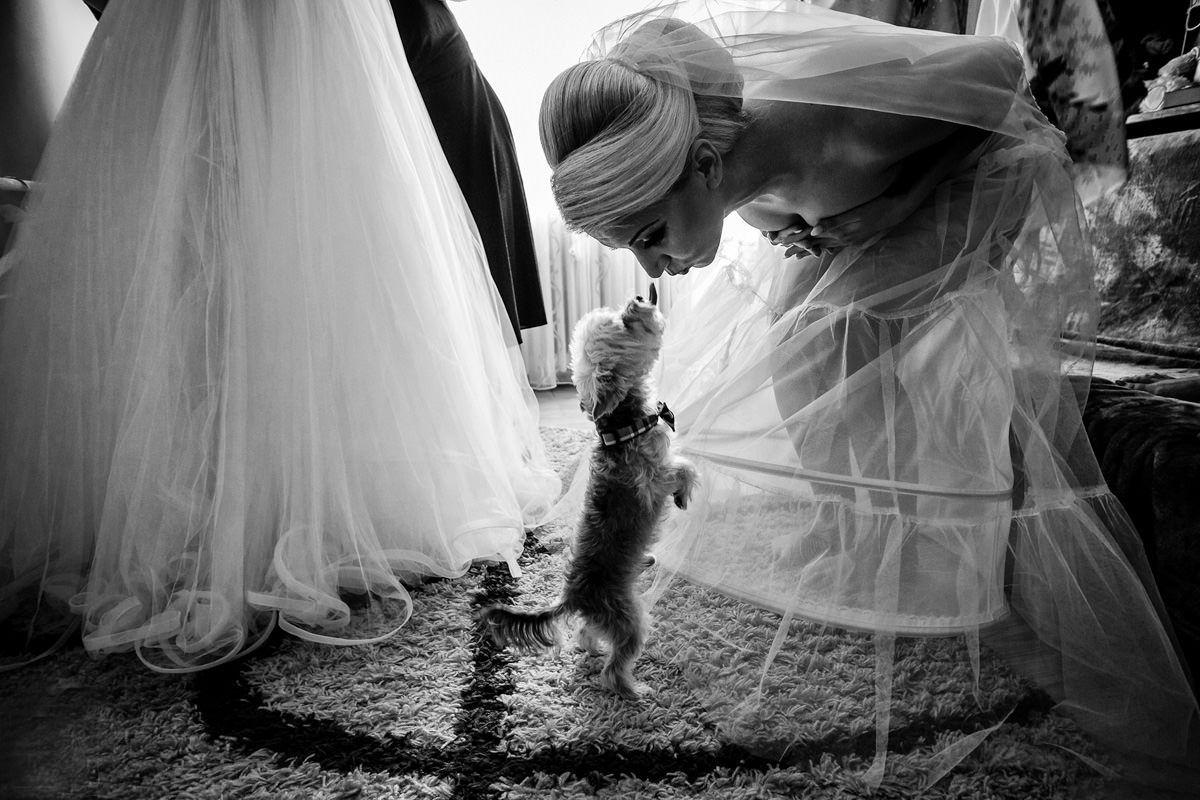 невеста фото прикольные картинки разобрать почистить немного