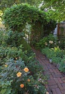 like grandma used to grow Lovely brick pathway through a vine covered trellis leading into the