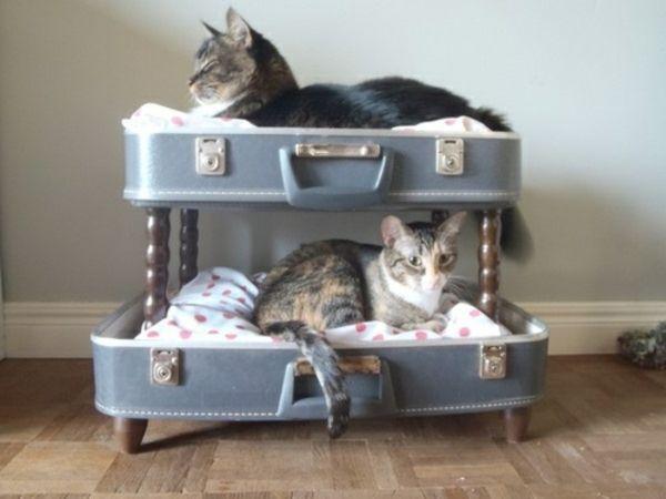 Betten-für-katzen-möbel-mit-vintage-look-selber-machen