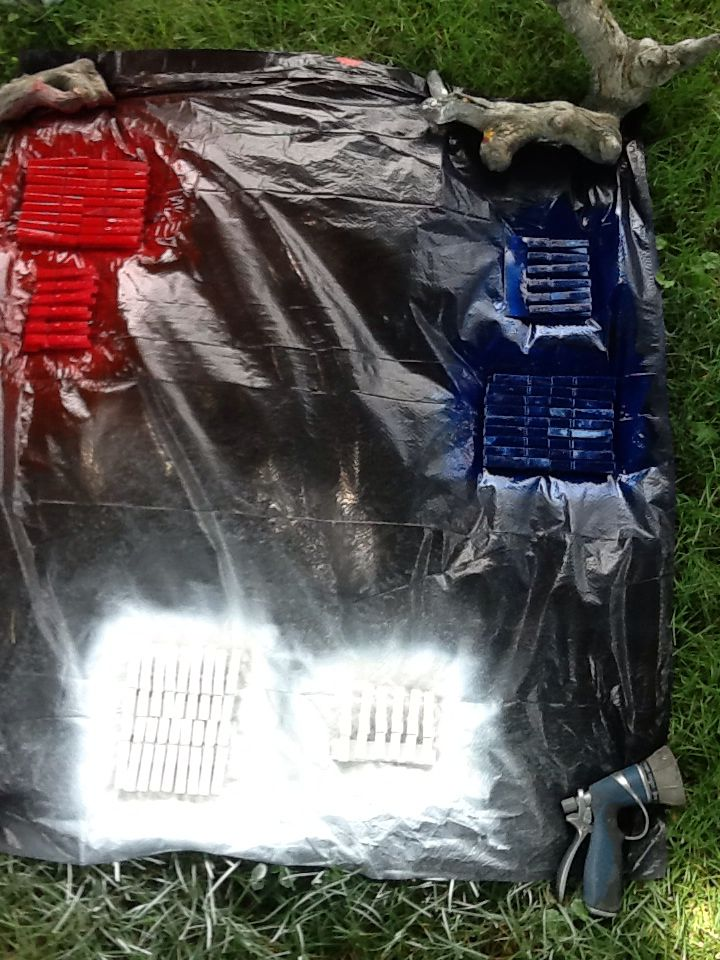 Spray paint clothes pins in red, white & blue.