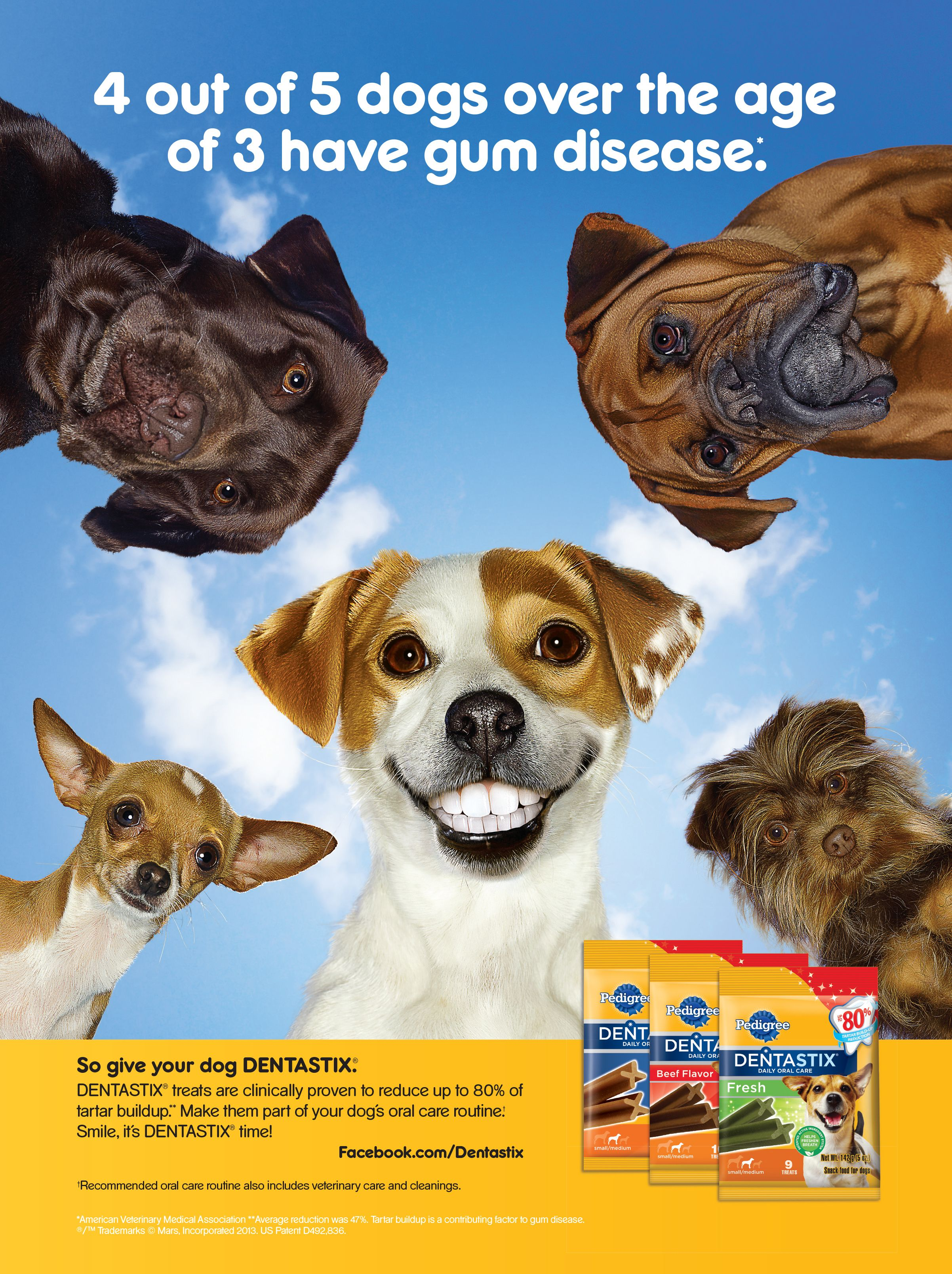Thanks To Mars Petcare Us Makers Of Pedigree For Sponsoring