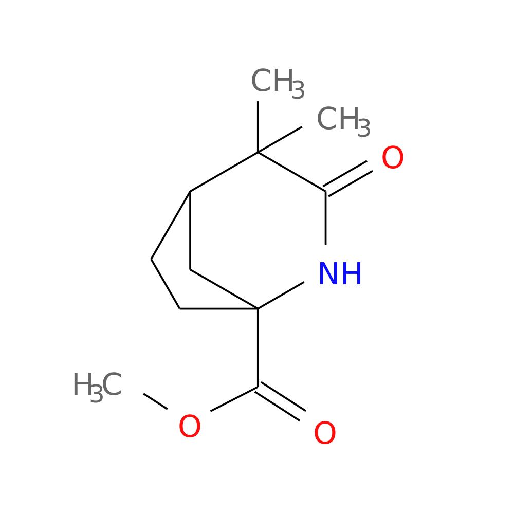 4,4-dimethyl-3-oxo-2-aza-bicyclo[3.2.1]octane-1-carboxylic acid, Schlafzimmer entwurf