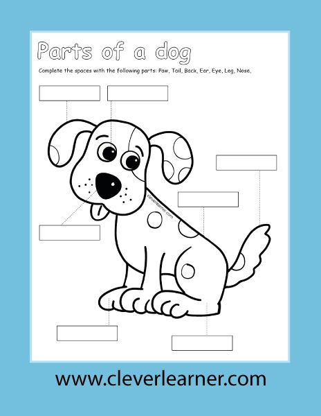 Kids And Pet Dogs Color Label