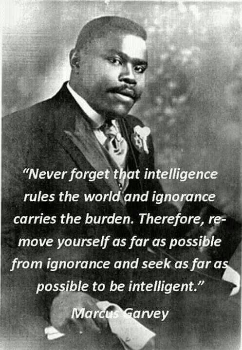 The Freedom of Intelligence Trounces The Burdens Of Ignorance