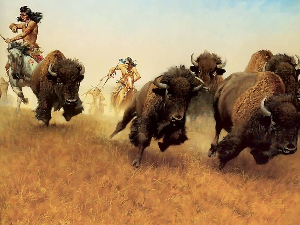 What Food Does A Buffalo Eat