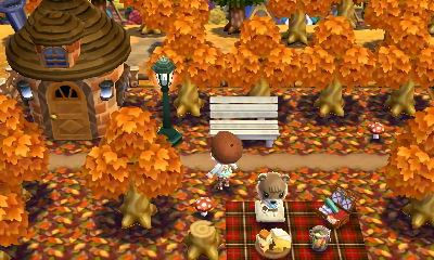 落ち葉の絨毯と秋のマイデザイン うに森 ハッピーホームデザイナー日記 どうぶつの森amiiboカード ペットの部屋 ハッピーホームデザイナー