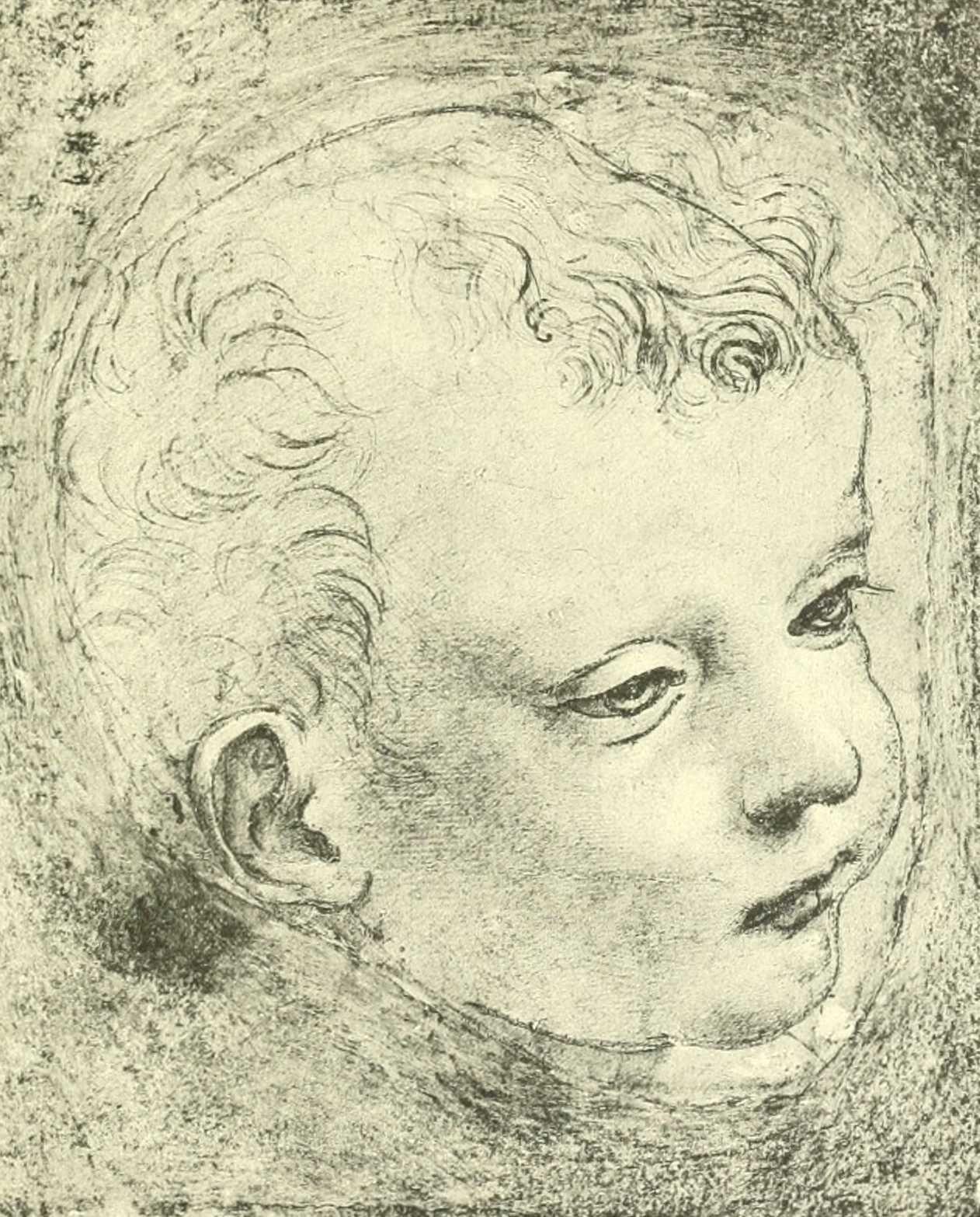 Dessins l onard de vinci dessins leonard de vinci tete d enfant cheveux clairsemes sur le - Photo leonard de vinci ...