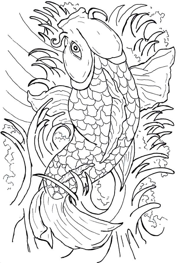 Beautiful Japanese Coy Fish Coloring Pages