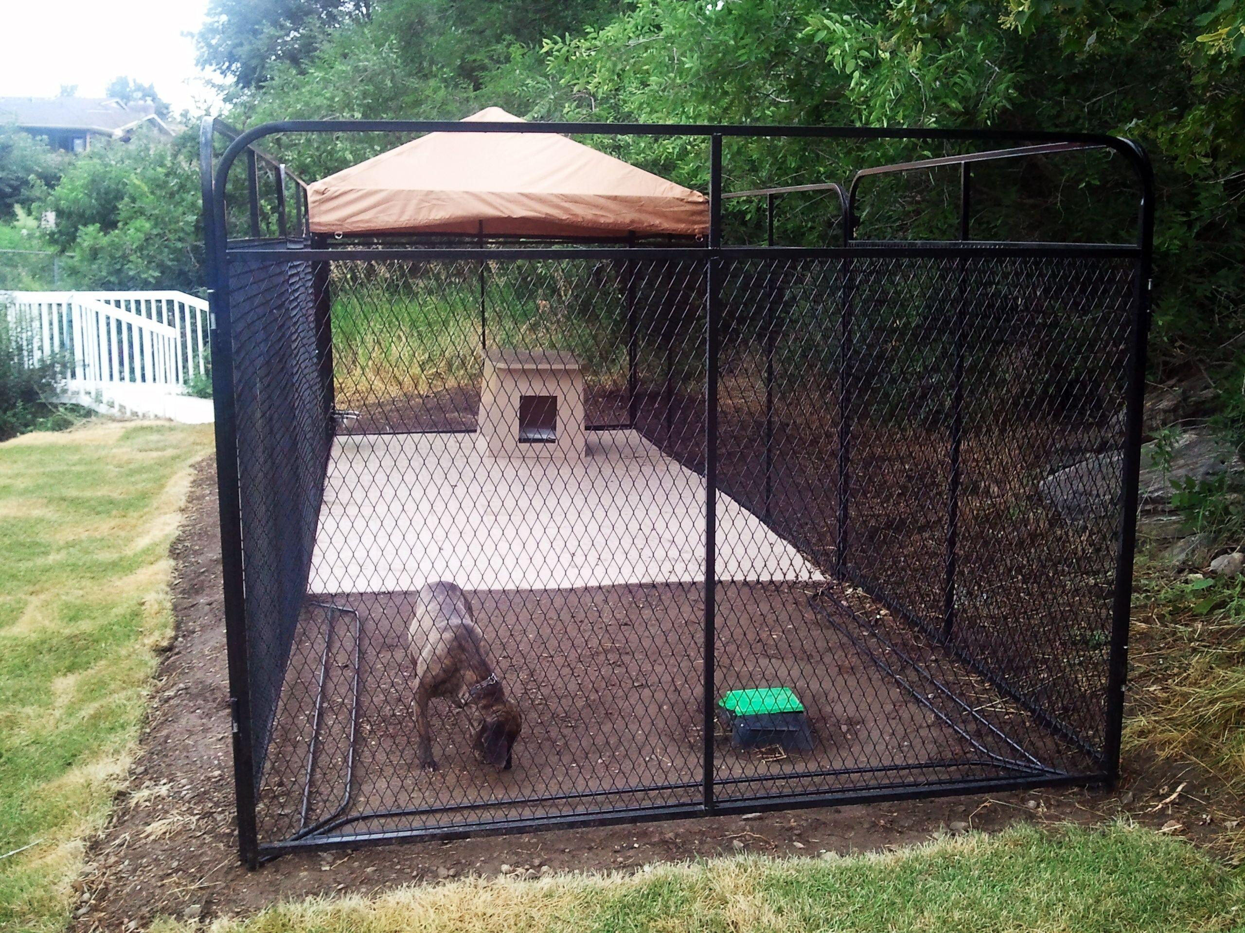 Image result for large dog fence Outside dogs, Dog