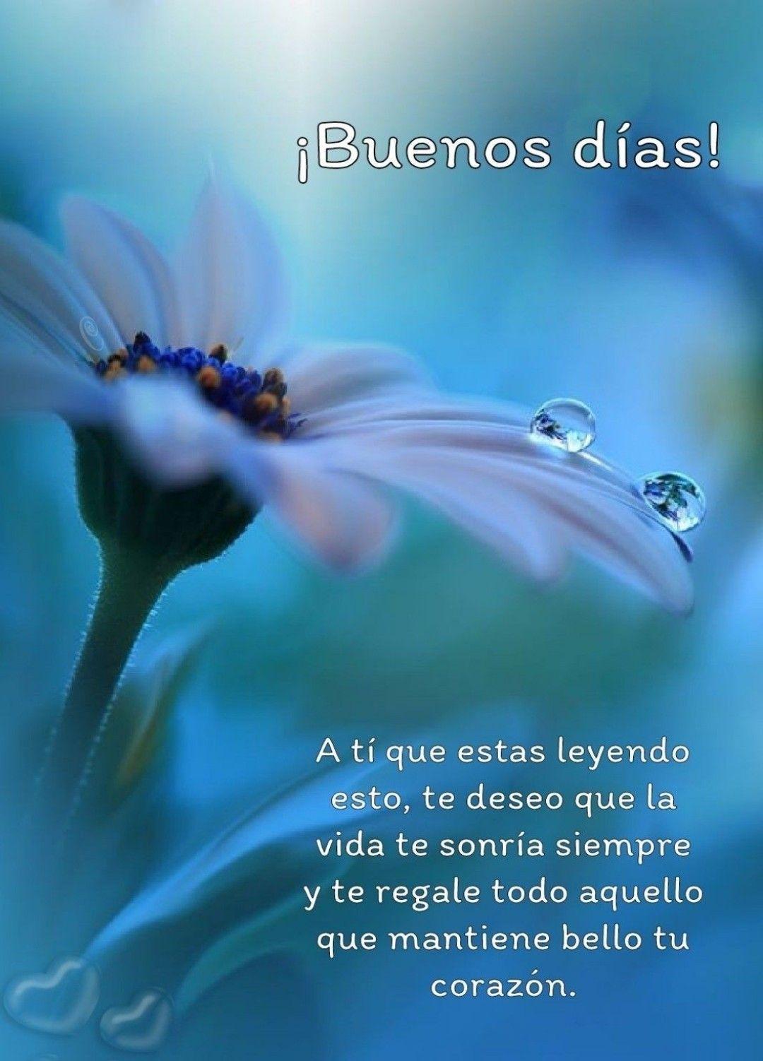 Pin By Ximena Chouza On Oraciones Saludos De Buenos Dias Tarjetas