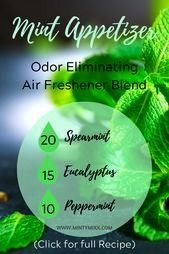 Appetizer Odor Eliminating Air Freshener Blend Mint Appetizer Odor Eliminating Air Freshener Blend Mint Appetizer Odor Eliminating Air Freshener Blend Diffuser Blends Tha...