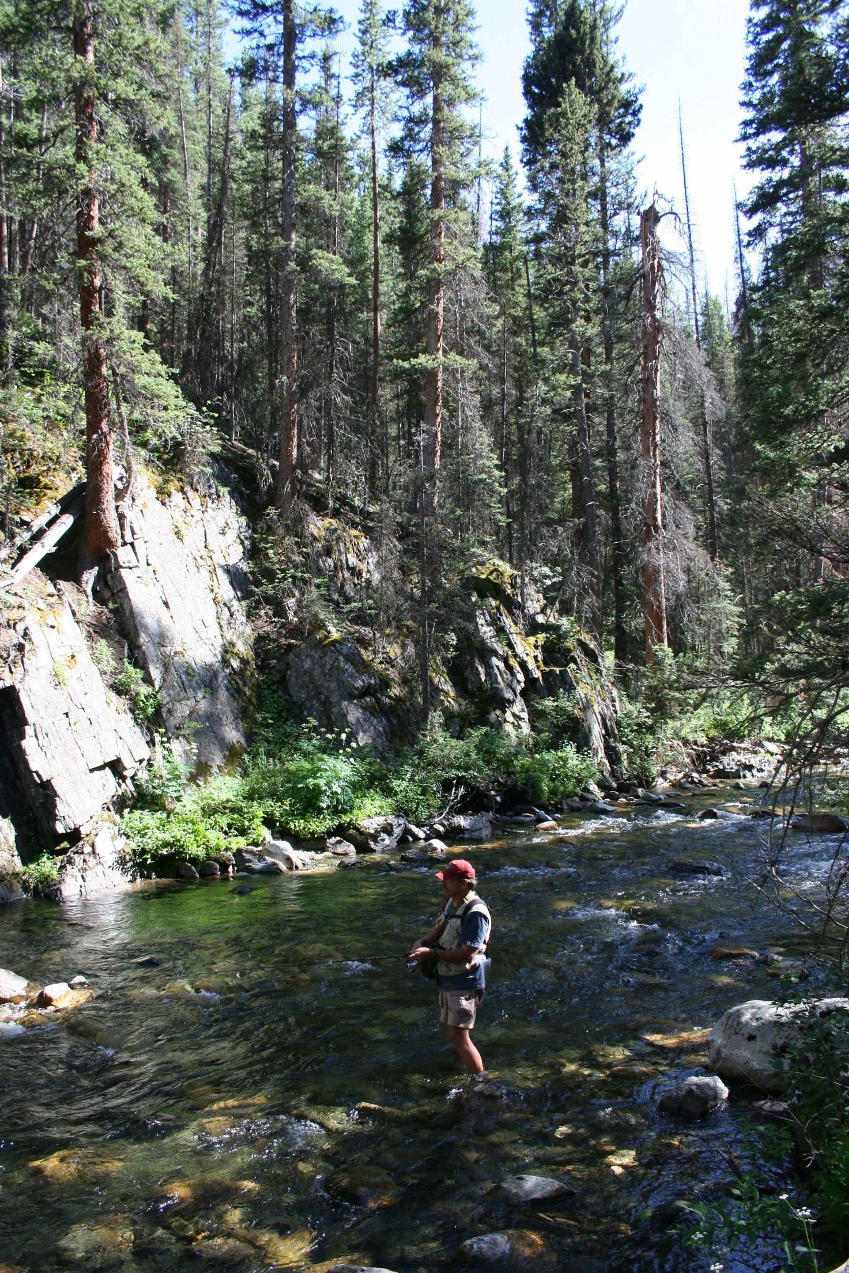 Fishing Rock Creek Snowy Range Wyoming Trout Fishing Rock Creek Natural Landmarks