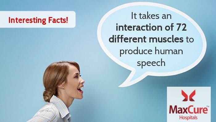 It takes an interaction of 72 different muscles to produce human ...