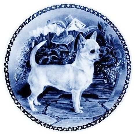 Chihuahua Smooth Coat Standing Danish Blue Porcelain Plate Ebay