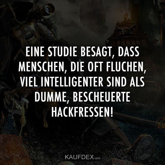 Eine Studie besagt, dass Menschen, die oft fluchen, viel intelligenter sind als dumme, bescheuerte Hackfressen!
