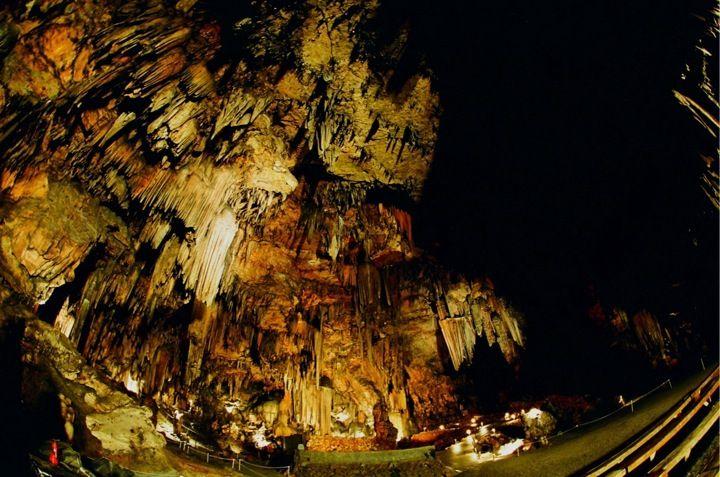 Desoto Caverns.....Not your ordinary theme park!
