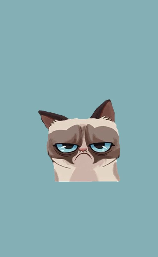 Me In The Morning Draws In 2018 Pinterest Grumpy Cat Grumpy