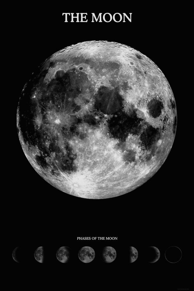Moon With Its Phases Wondrous Moon Poster Prints The Moon Tonight