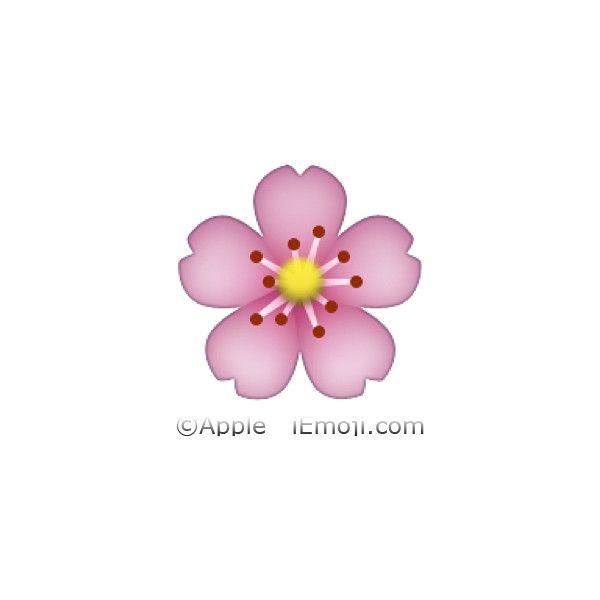 Cherry Blossom Liked On Polyvore Featuring Emojis Fillers Emojis Transparent Other Phrase Quotes Saying An Gravador De Tela Emojis Adesivos De Unhas
