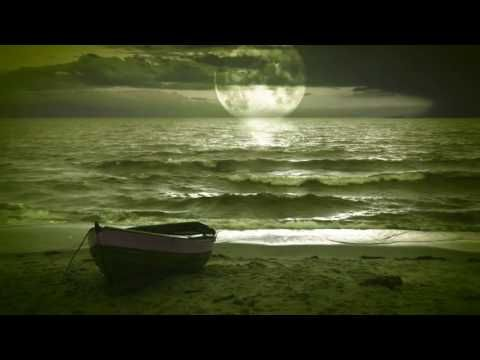 Free Hd Background Wedding Background Video Background Motion Background For Editor S 31 Zac Brown Band Salt Water Fishing Brown Band