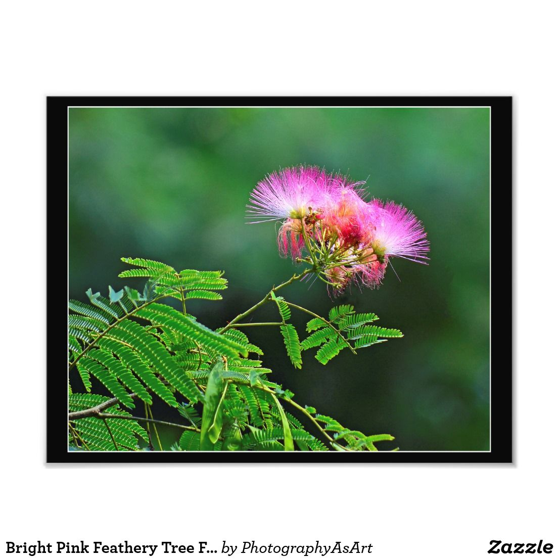 Pink Tissue Paper With Pink Tree Flower Stuff You Might Like