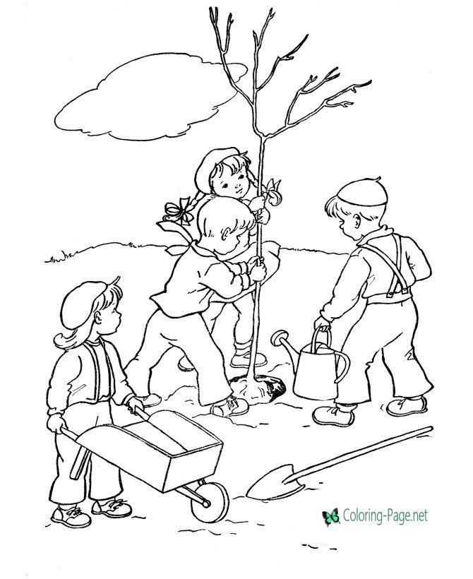 Arbor Day Coloring Pages Dibujos Para Ninos Plantillas Para Dibujar