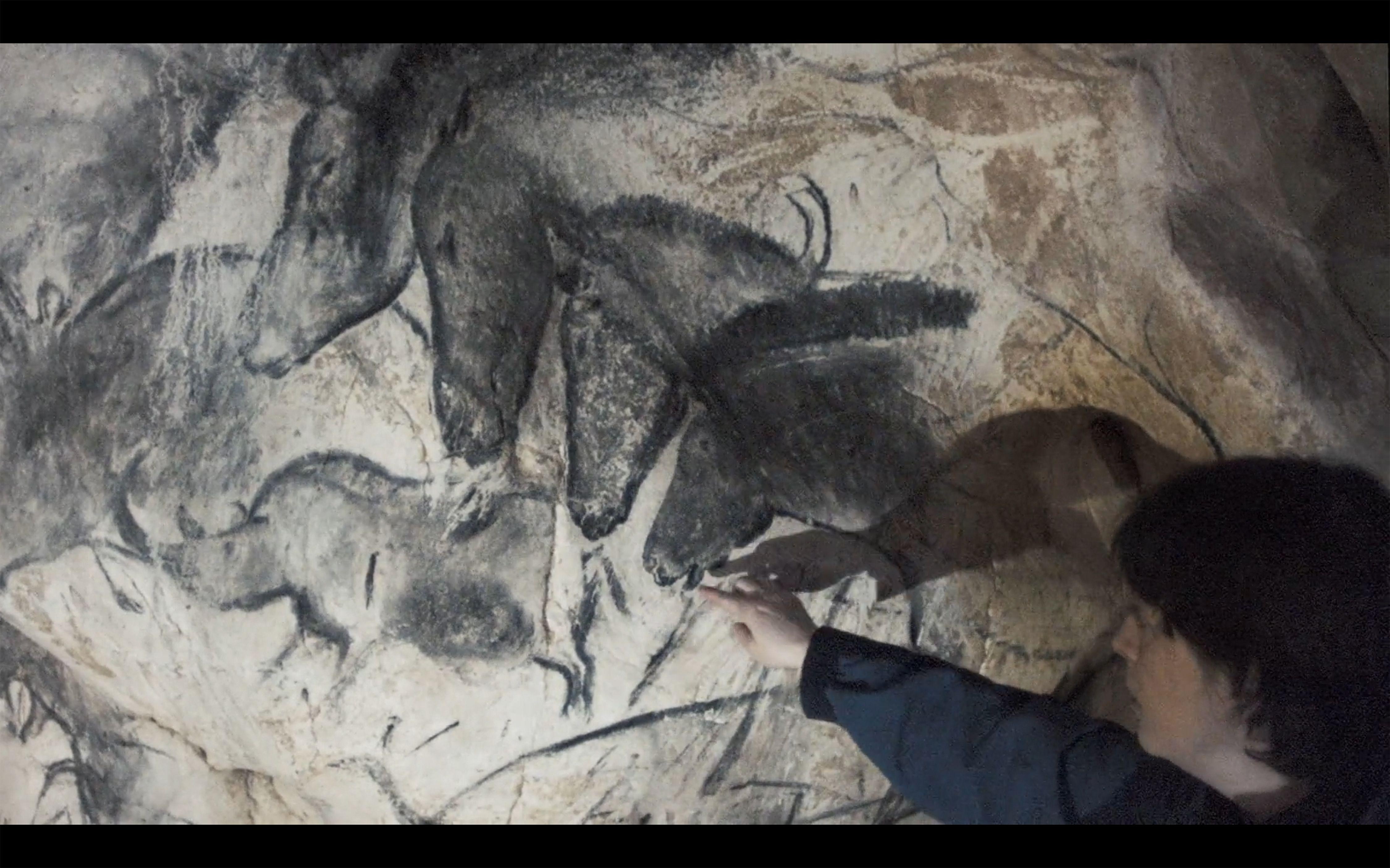 Cave Of Forgotten Dreams - Werner Herzog.