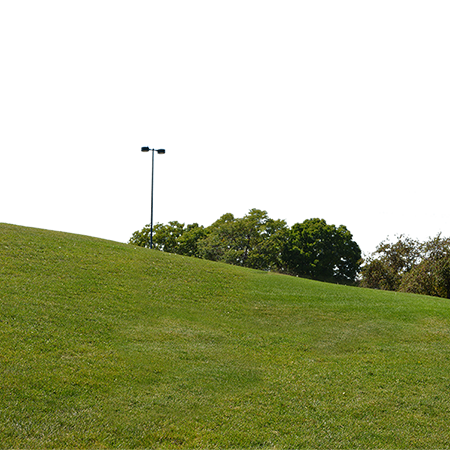 This Huge Background Texture Is A Gently Sloping Green Grass Hill Grassy Hill Grass Textures Trees To Plant