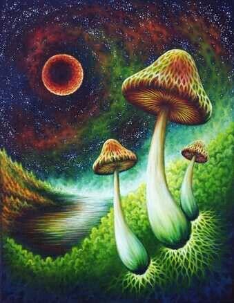 Setas Cósmicas ^^