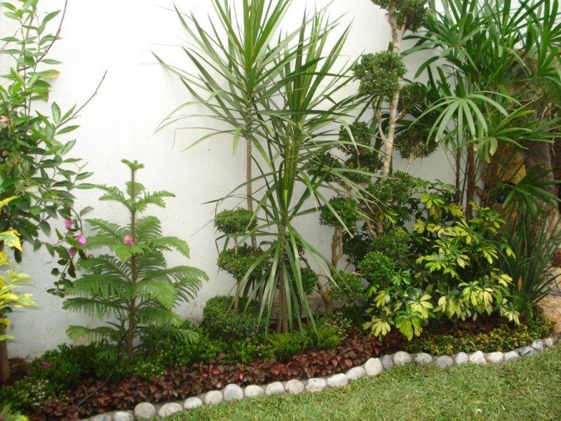 Asociacion de jardineros de xochimilco jardineria - Imagenes de jardineria ...
