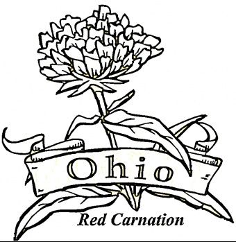 Ohio Flower Red Carnation Flower Coloring Pages Coloring Pages