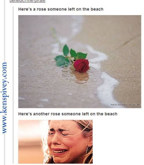 Someone left a rose on the beach. hahahaa poor Rose Tyler!