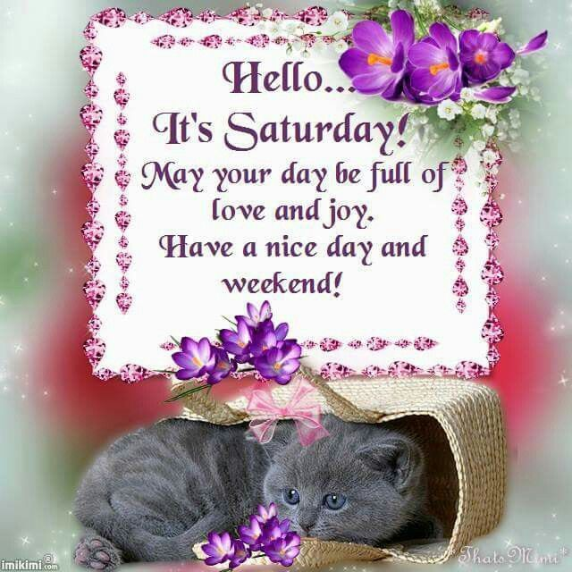 Hello Its Saturday Good Morning Saturday Saturday Quotes Good Morning Saturday Saturday Bless Saturday Greetings Saturday Morning Greetings Saturday Quotes