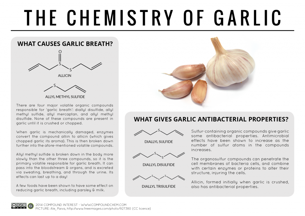 What Compounds Cause Garlic Breath The Chemistry Of Garlic Chimica Organica Chimica Infografica