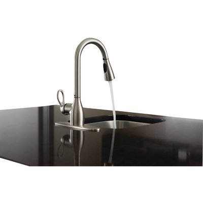 Moen Kleo Single Handle Kitchen Faucet with Reflex™ and ...