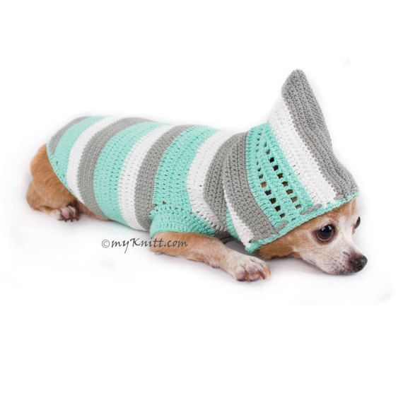 Baby Turquoise Dog Hoodie, Handmade Knitted Dog Sweater, Chihuahua ...