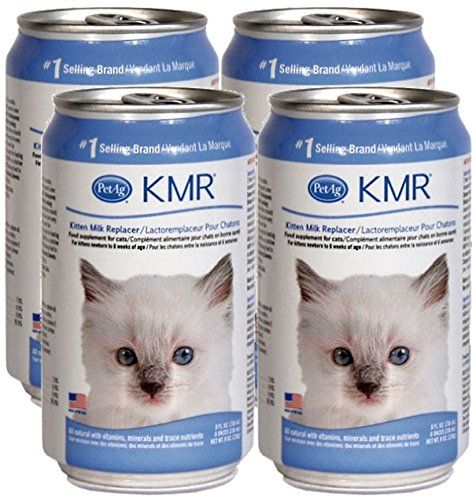 Kmr Liquid Milk Replacer For Kittens Cats 8oz Cans 4 Pack Pet Ag Http Www Amazon Com Dp B00mtpgcow Ref Cm Sw R Pi Dp F Pets Kittens Kittens And Puppies