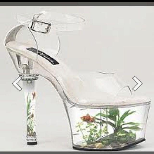 High Heel Shoe Aquarium Tiny Water Worlds Pinterest Stupid Simple Silly Me Pinterest