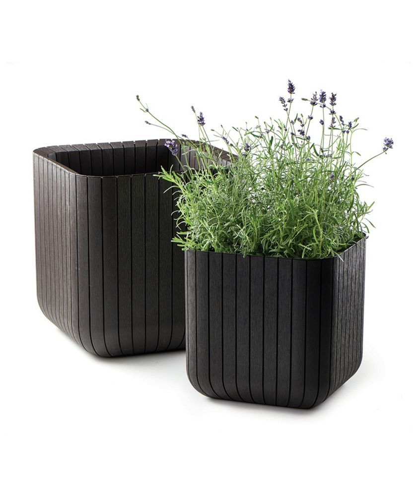 Wonderful Buy Keter Cube Planters  Pack Of  At Argoscouk  Your Online  With Luxury Buy Keter Cube Planters  Pack Of  At Argoscouk  Your With Amusing Winter Garden Orange County Also Garden Herb In Addition Jade Garden Kilburn And Amtech Gardening As Well As Pub Covent Garden Additionally How Far Is Keukenhof Gardens From Amsterdam From Pinterestcom With   Luxury Buy Keter Cube Planters  Pack Of  At Argoscouk  Your Online  With Amusing Buy Keter Cube Planters  Pack Of  At Argoscouk  Your And Wonderful Winter Garden Orange County Also Garden Herb In Addition Jade Garden Kilburn From Pinterestcom