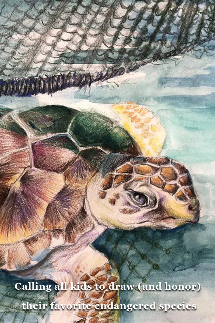 Animal News Endangered species art, Endangered species