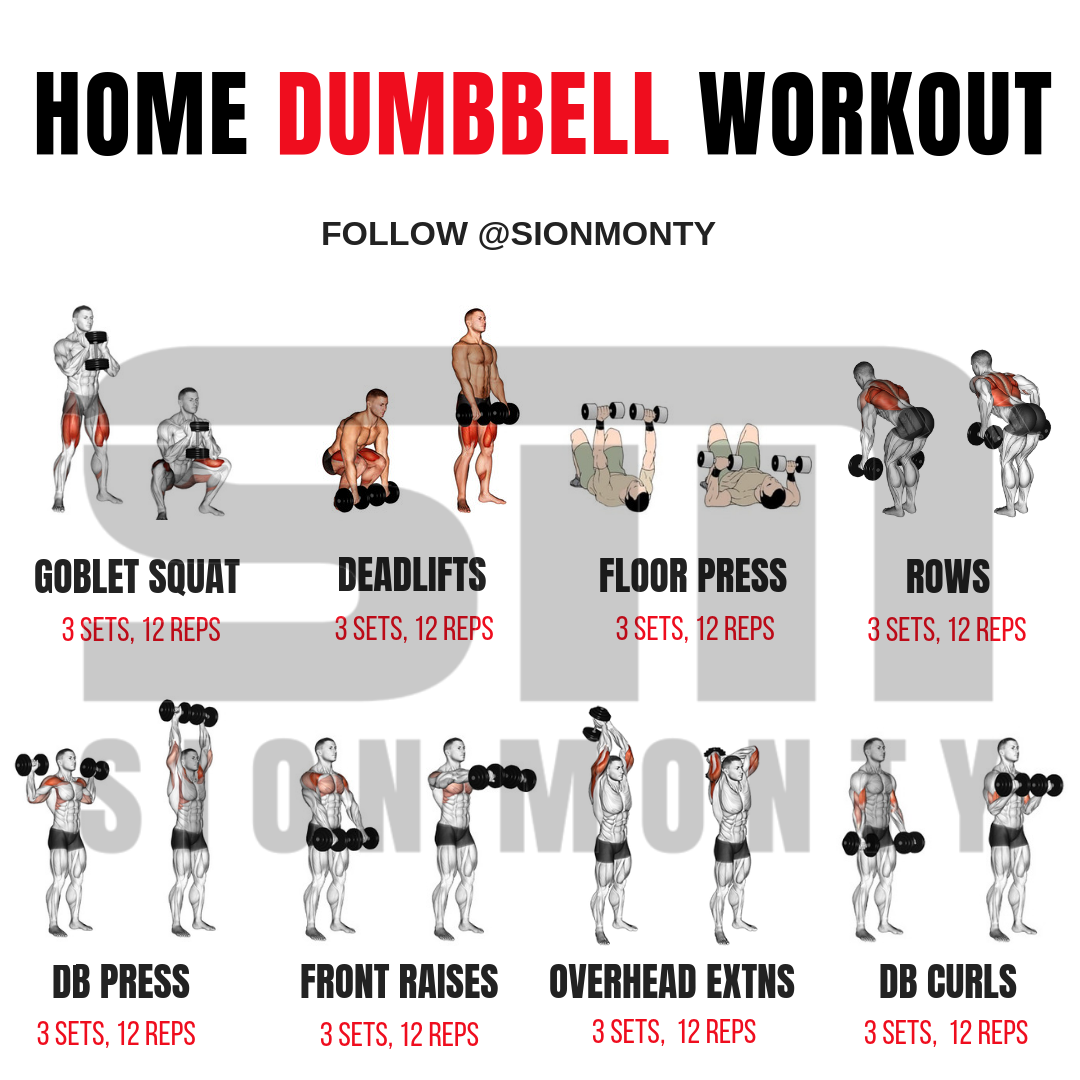 Home Dumbbell Workout by Sion Monty sionmonty.com musclemorphsupps.com Dumbbell workout at
