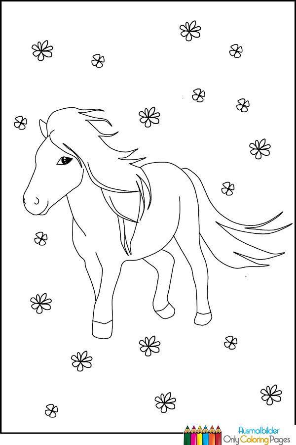 pony ausmalbilder zum ausdrucken  ausmalbilder  horse