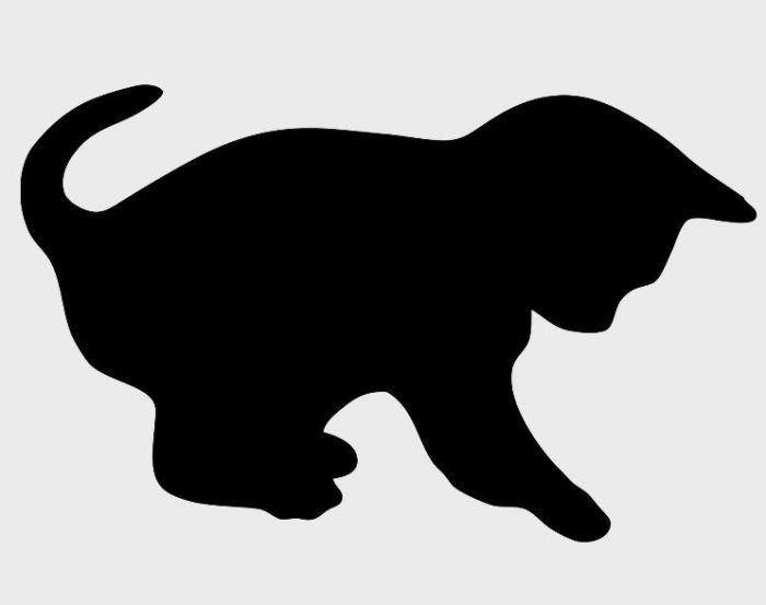 Top silhouette chat - Recherche Google | plamsa | Pinterest  SO86